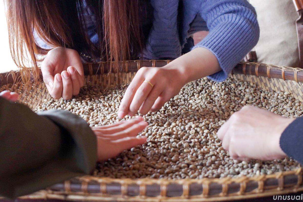 ラオス コーヒーワークショップ