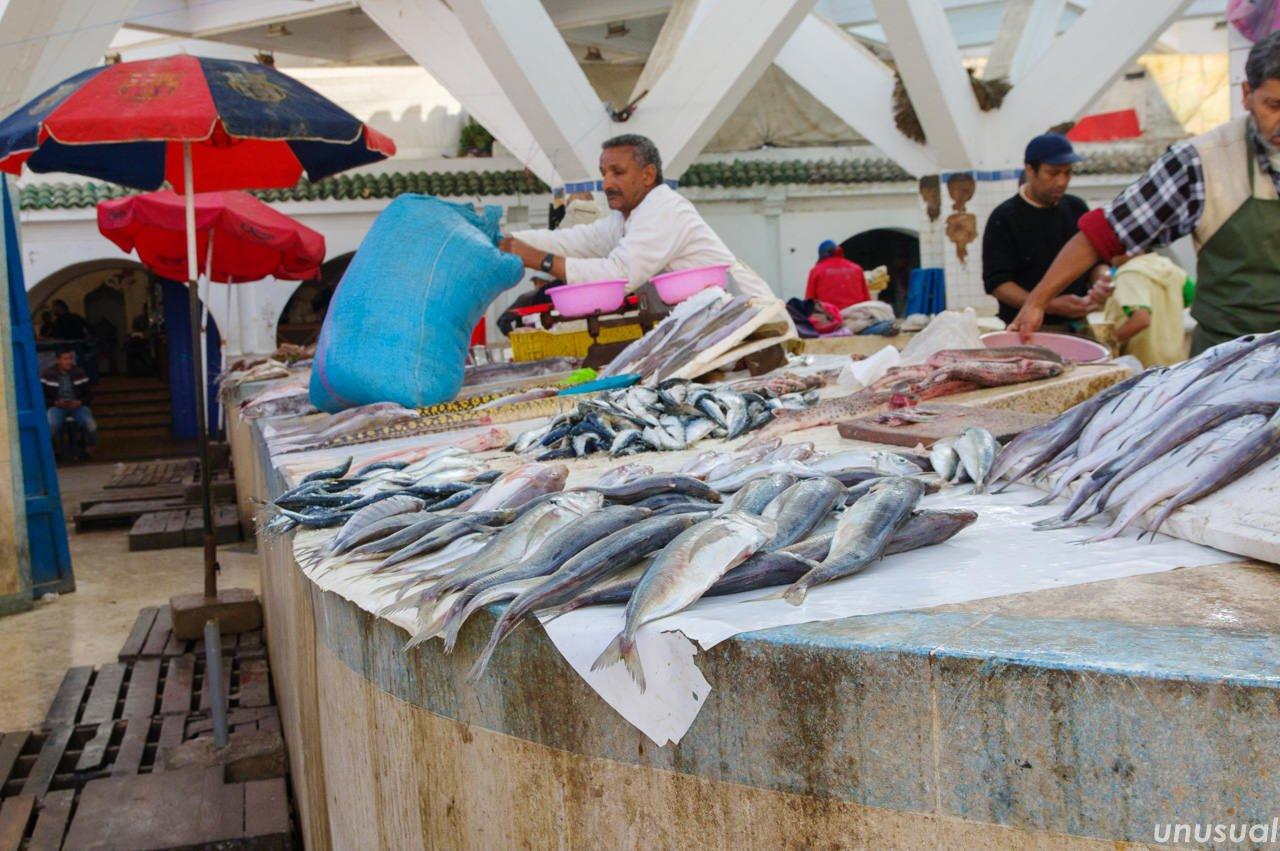 モロッコ エッサウィラの魚市場