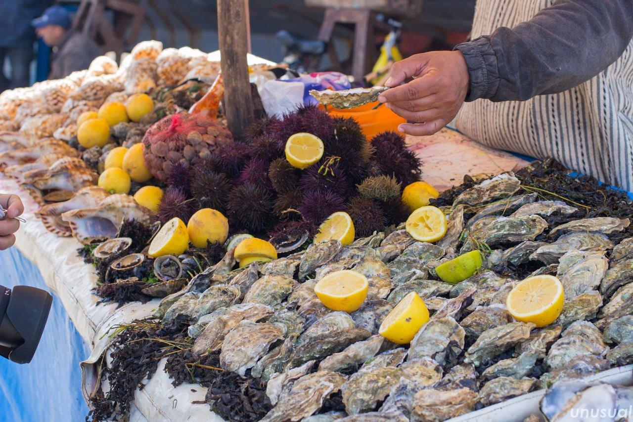モロッコ エッサウィラのウニと牡蠣