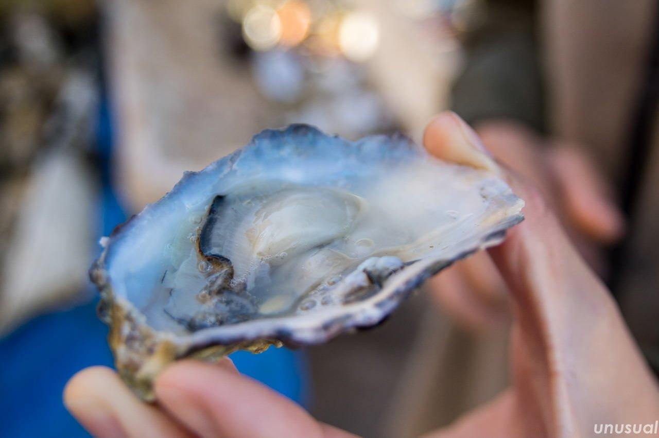 エッサウィラの牡蠣